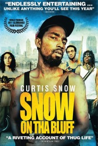 snow on the bluff